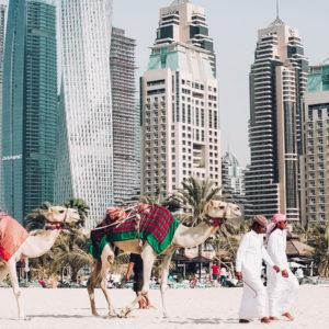 Food Trends Dubai Blog by Baum & Garten